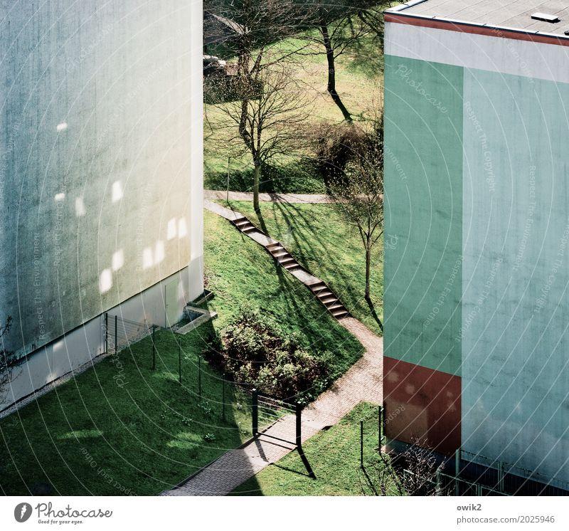 Hohle Gasse Schönes Wetter Pflanze Baum Gras Grünpflanze Wiese Bautzen Deutschland Kleinstadt Stadtrand bevölkert Haus Gebäude Plattenbau Mauer Wand Treppe