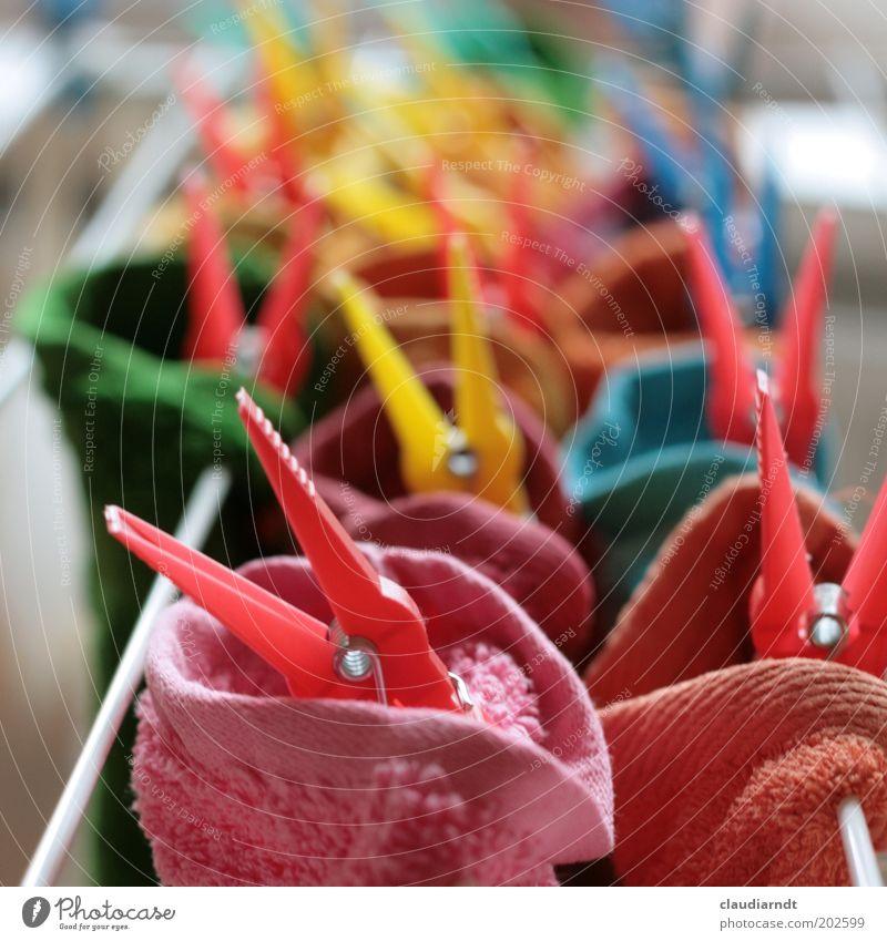 Buntwäsche weich Sauberkeit Häusliches Leben festhalten Kunststoff Reihe Reinigen trocken hängen Stoff Wäsche waschen kuschlig Haushalt trocknen