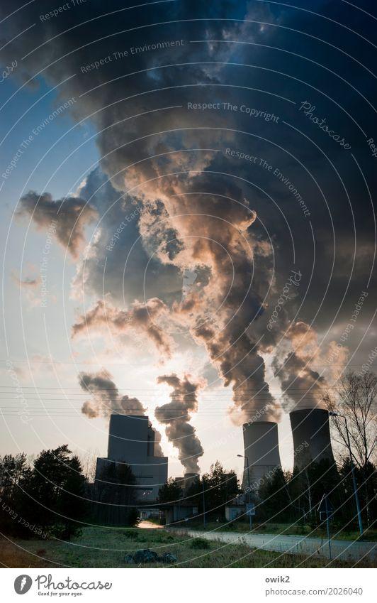 Kunstwolken Energiewirtschaft Kohlekraftwerk Pflanze Baum Gras Industrieanlage Stromkraftwerke Boxberg Deutschland Straße leuchten bedrohlich dreckig dunkel