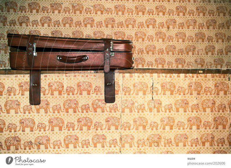 Koffer Häusliches Leben Tapete Leder Sammlerstück alt retro braun Nostalgie Vergangenheit Wand Elefant packen Tapetenwechsel Tapetenmuster Lederkoffer offen