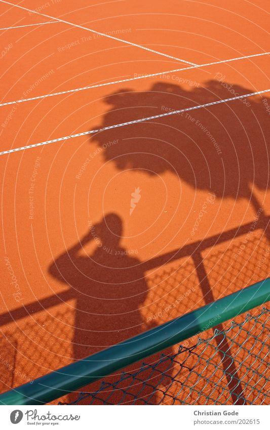 Tenniswetter Mann grün Baum rot Sport Linie orange Schönes Wetter Zaun Baumstamm Sport-Training Fotograf Fotografieren Ballsport Barriere