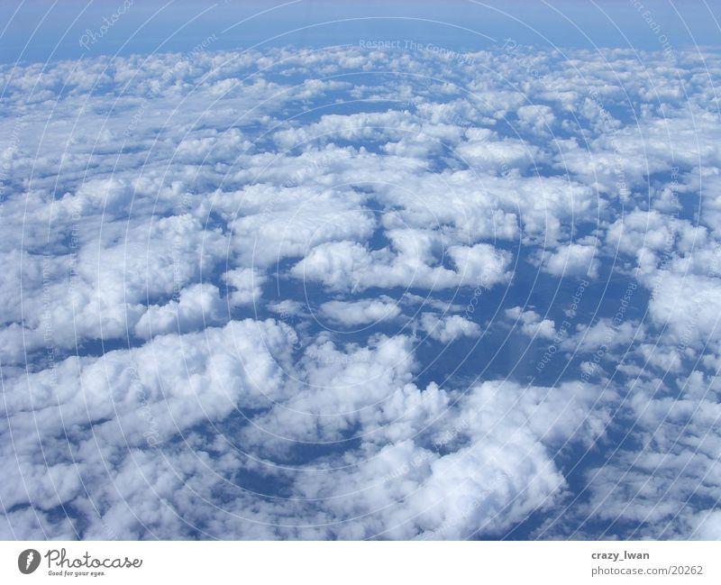 Im 7ten Himmel Wolken Schaf Blauer Himmel perfekt
