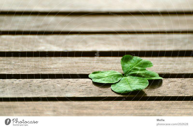 Die Sache mit dem Glück Natur Pflanze Gefühle Holz Linie Religion & Glaube einfach liegen rein Streifen Wunsch Zeichen positiv Klee