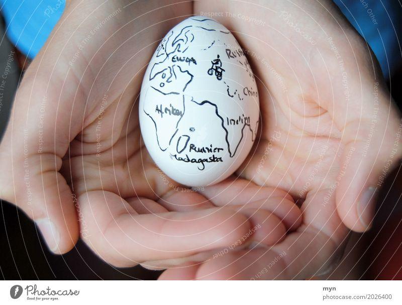 Fragiles Gut Lebensmittel Ei Ernährung Frühstück Ferien & Urlaub & Reisen Tourismus Ausflug Abenteuer Ferne Fahrradtour Kunstwerk Umwelt Erde Klimawandel