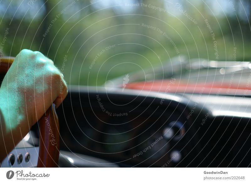 BMW 2002er Cabrio - ab ins Grüne Mensch Mann Natur Hand schön Straße kalt PKW Zufriedenheit elegant Geschwindigkeit ästhetisch fahren Vertrauen Lebensfreude