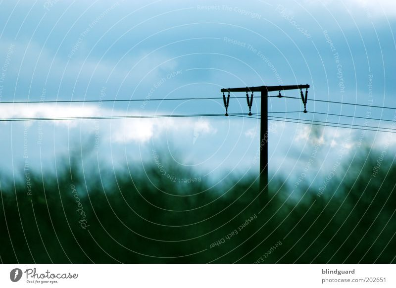 Telegraph Road Natur alt Himmel grün blau Sommer schwarz Wolken braun Energiewirtschaft Zukunft Kommunizieren Kabel Telekommunikation Strommast Pfosten