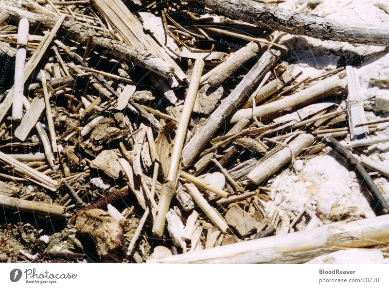 Treibgut Meer Strand Holz Küste Strandgut