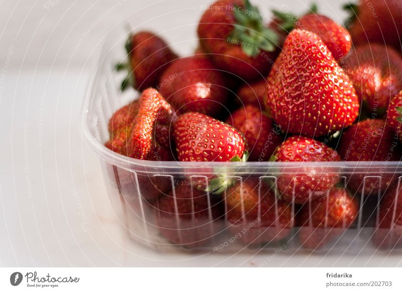 mmmmhhhhhh rot Glück Frucht natürlich Lebensmittel süß Kunststoff genießen lecker Bioprodukte Beeren Schalen & Schüsseln Kunststoffverpackung Erdbeeren