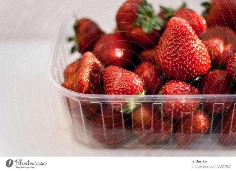 mmmmhhhhhh rot Glück Frucht natürlich Lebensmittel süß Kunststoff genießen lecker Bioprodukte Beeren Schalen & Schüsseln Kunststoffverpackung Erdbeeren Vorfreude Verpackung