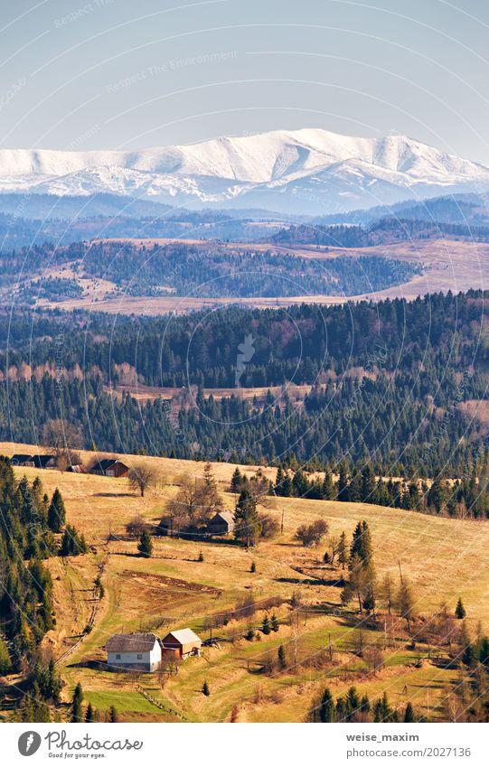 Schnee caped Berge am sonnigen Frühlingstag Himmel Natur Ferien & Urlaub & Reisen Sommer grün Baum Landschaft Haus Wald Berge u. Gebirge Umwelt Wiese natürlich
