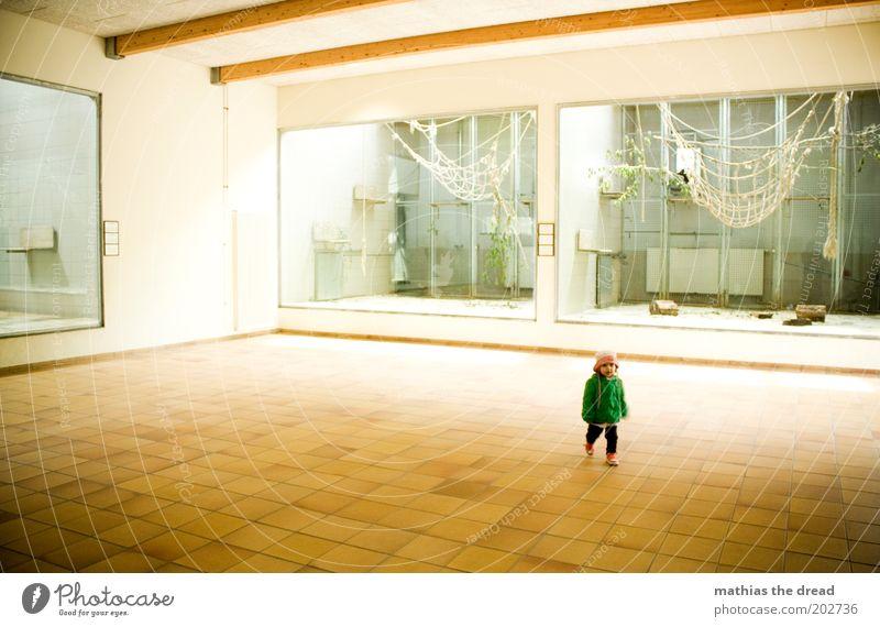 NIEMAND ZUHAUSE Mensch schön Einsamkeit Kindheit laufen Ausflug leer niedlich Kleinkind Zoo Hut Fliesen u. Kacheln Affen Besucher Gehege