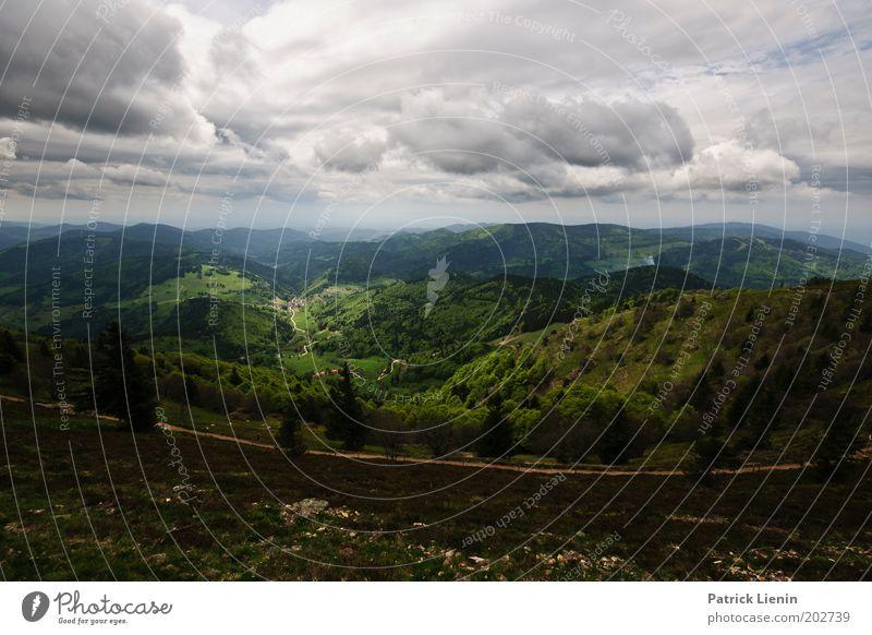 Abwärts Umwelt Natur Landschaft Berge u. Gebirge Hügel Schwarzwald Baum Aussicht Wolken dunkel Regen hoch grün Wege & Pfade Ferne genießen ruhen Erholung