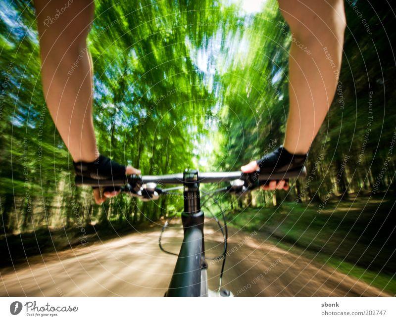 ride again Mensch Mann Jugendliche Ferien & Urlaub & Reisen Sommer Baum Sonne Freude Erwachsene Wald Sport Bewegung Junger Mann Gesundheit Fahrrad 18-30 Jahre