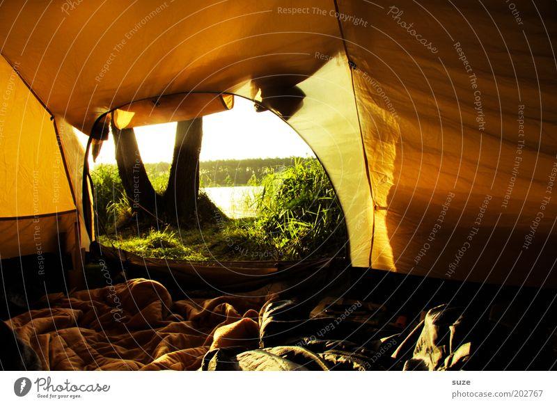 Zelt Natur Sonne Ferien & Urlaub & Reisen gelb See Ausflug Abenteuer authentisch Freizeit & Hobby Camping gemütlich Sonnenaufgang Sonnenuntergang Morgen