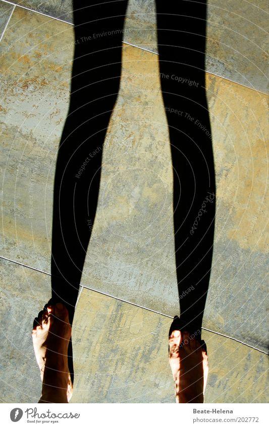 Auf den Füßen balancieren die Beine Fuß 1 Mensch berühren träumen ästhetisch schön einzigartig lang dünn feminin Gefühle Leidenschaft Warmherzigkeit Sehnsucht