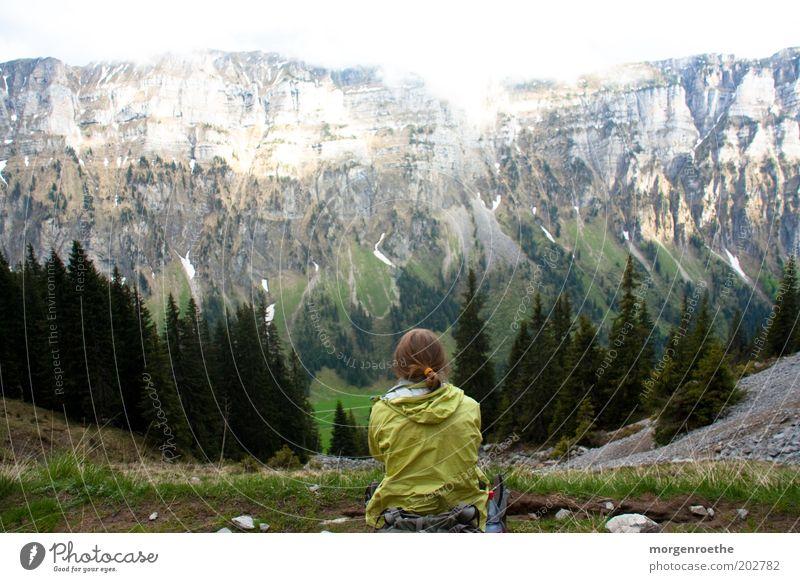 Aura Mensch Frau Erwachsene 1 Natur Landschaft Sommer Berge u. Gebirge wandern grau grün Schweiz Berner Oberland sitzen Nadelbaum Aussicht Panorama (Aussicht)