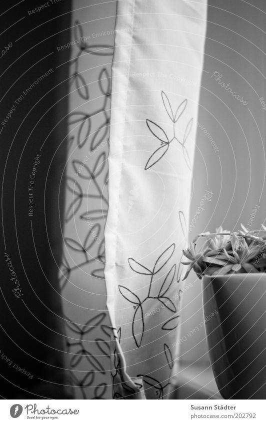 Am Fenster Pflanze Stil Dekoration & Verzierung Vorhang schick Kaktus Blumentopf Naht Fensterbrett Saum Blumenmuster