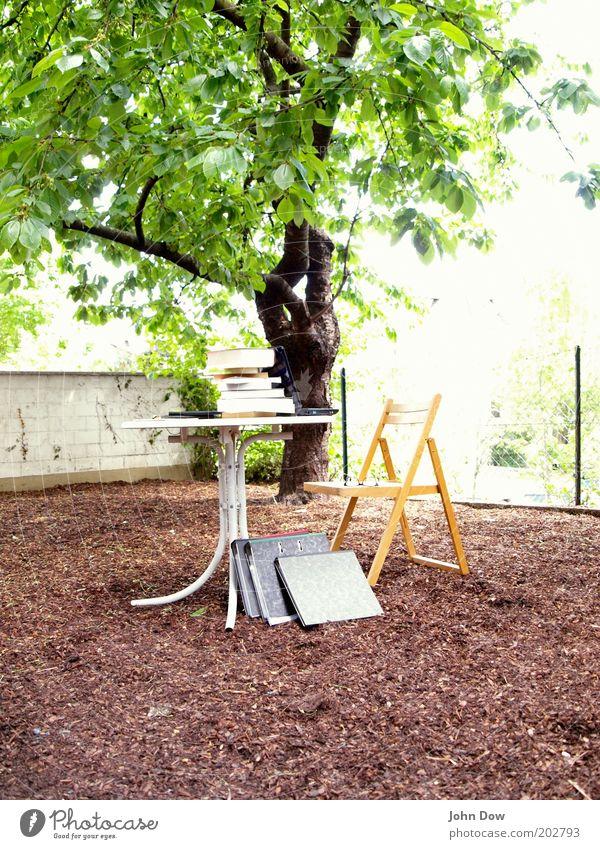 Plein-Air-Studieren Bildung lernen Studium Arbeitsplatz Sommer Schönes Wetter Baum Sträucher Garten Schreibwaren Aktenordner nachhaltig Natur Luft Klappstuhl
