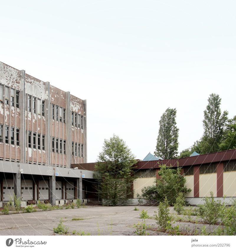 stillgelegt II Himmel Baum Sträucher Stadtrand Haus Industrieanlage Fabrik Platz Bauwerk Gebäude Architektur Fenster trist Farbfoto Außenaufnahme Menschenleer