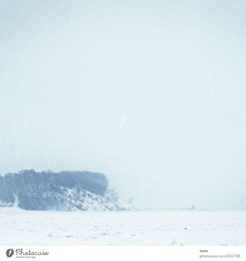 Schneeblind Umwelt Natur Landschaft Urelemente Luft Himmel Wolkenloser Himmel Horizont Winter Klima Nebel Eis Frost Küste Ostsee Meer außergewöhnlich