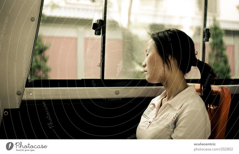 Pause Frau Mensch Jugendliche alt Sommer ruhig Leben Erholung feminin Fenster träumen Kopf Erwachsene schlafen sitzen Pause