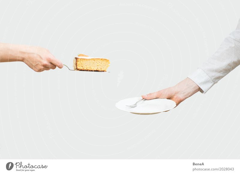 Hände servieren ein Stück Kuchen auf einen Teller Mensch Hand Essen feminin Wohnung Häusliches Leben maskulin Ernährung Arme genießen Finger Wellness lecker