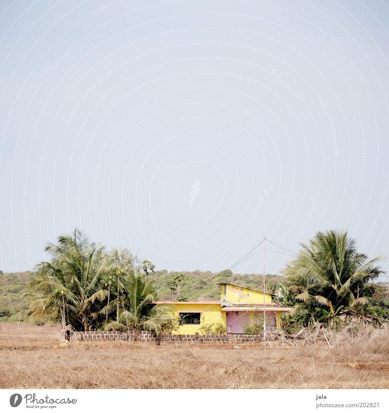 ferienwohnung Himmel Baum Gras Sträucher Palme Goa Indien Asien Dorf Menschenleer Haus Bauwerk Gebäude Antenne hell blau gelb Farbfoto Außenaufnahme