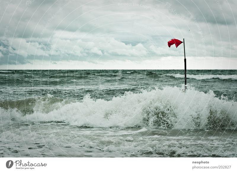 standhaft grün rot Strand Einsamkeit kalt grau Luft Wellen Küste Wind Horizont Fahne stark Unwetter Urelemente Nordsee