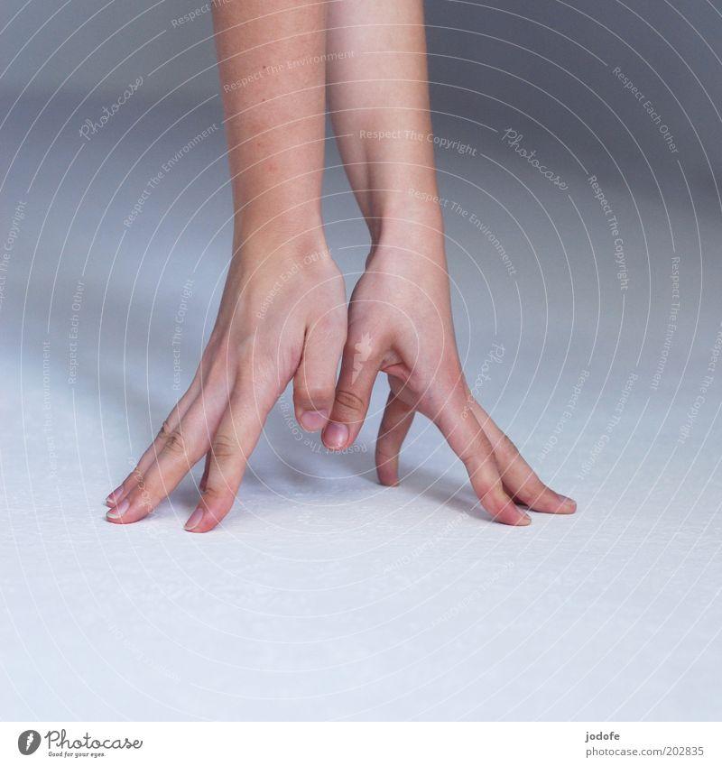 Hahnenfuß Mensch Arme Hand 1 Spitze Finger abstützen stoppen Haut finger spreizen 2 Farbfoto Gedeckte Farben Innenaufnahme Detailaufnahme Textfreiraum links