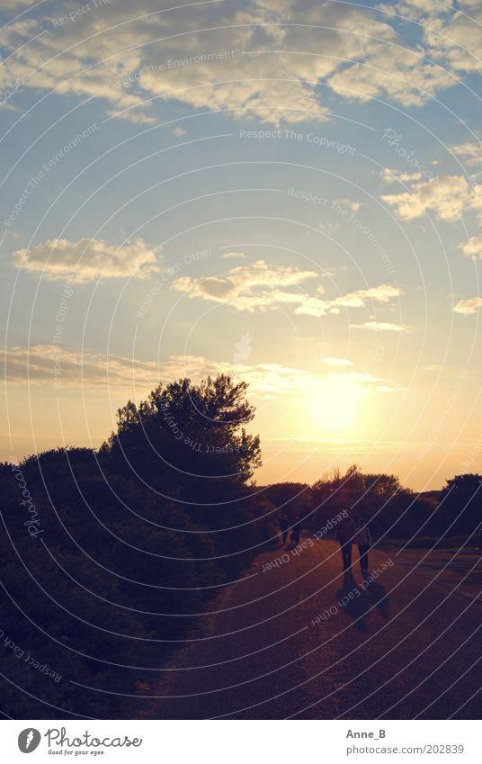 Walking On Sunshine Mensch Natur Himmel weiß Baum Sonne blau Sommer Ferien & Urlaub & Reisen ruhig schwarz Wolken gelb Straße Erholung Paar
