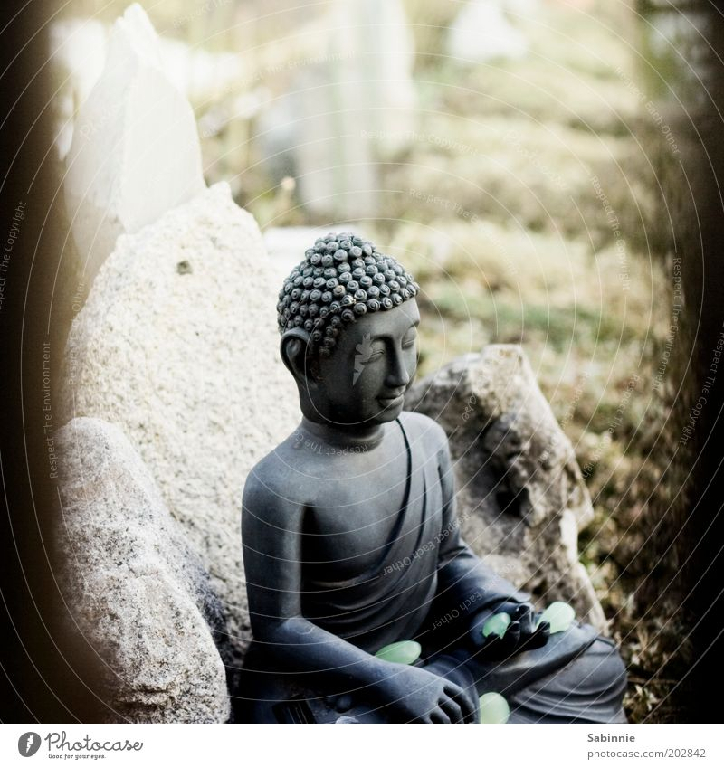Schrebergarten-Zen Skulptur Buddha Statue Garten Stein Zeichen berühren Erholung ästhetisch elegant positiv Glück Zufriedenheit Religion & Glaube Meditation