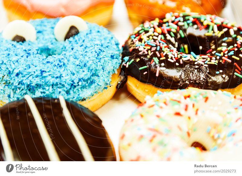 Lustige bunte Donuts im Kasten blau Farbe weiß Essen lustig Lebensmittel braun Ernährung frisch Fröhlichkeit süß rund Frost lecker Süßwaren Frühstück