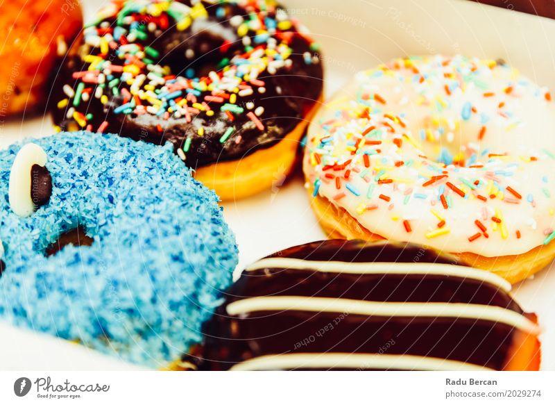 Lustige bunte Donuts im Kasten blau Farbe weiß Essen lustig Lebensmittel braun Ernährung frisch retro süß niedlich rund Frost lecker Süßwaren