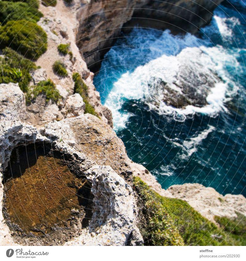 Klippenspringer Natur Landschaft Wasser Wellen Küste Bucht Mallorca hoch bedrohlich Mut Felsen Farbfoto Außenaufnahme Schwache Tiefenschärfe Vogelperspektive