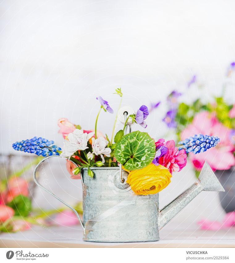 Gießkanne mit bunten Garten Blumen auf dem Tisch Natur Pflanze Sommer schön Blatt gelb Blüte Frühling Innenarchitektur Stil Design rosa Häusliches Leben