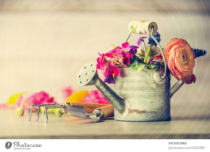 Gießkanne mit Garten Blumen Stil Design Freizeit & Hobby Sommer Natur Pflanze Herbst Blatt Blüte Dekoration & Verzierung Blumenstrauß Liebe retro gelb rosa
