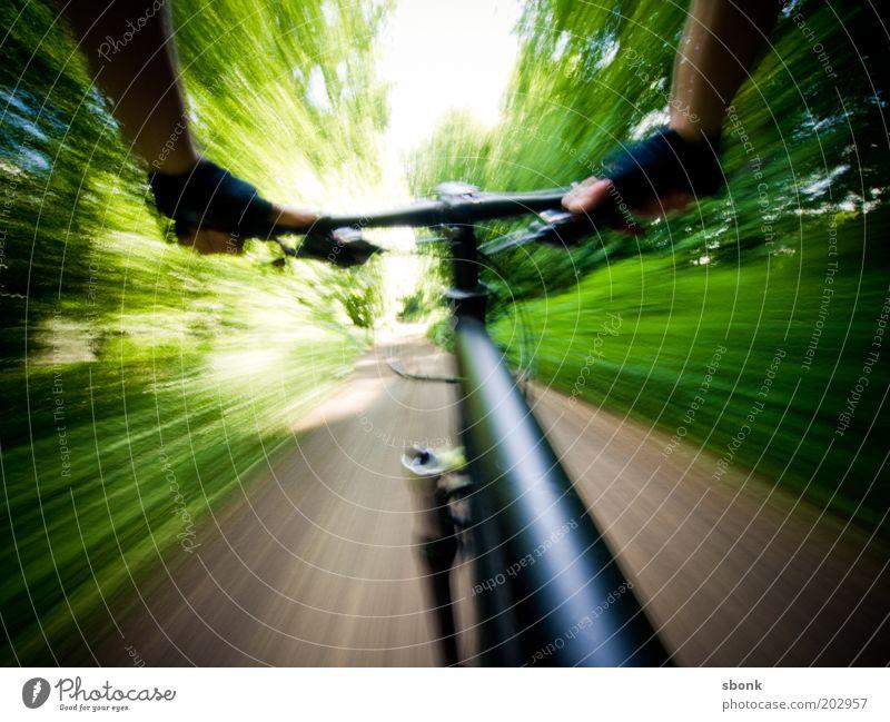 shaky freeride Mann Natur Sommer Sport Wald Wege & Pfade Fahrrad Geschwindigkeit fahren Freizeit & Hobby sportlich Fahrradfahren Handschuhe Mountainbike Schutz
