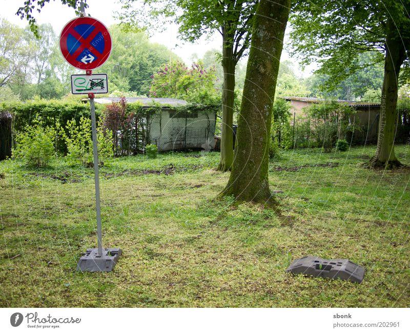 who cares Baum Garten PKW Park Schilder & Markierungen Rasen Hinweisschild Gesetze und Verordnungen Symbole & Metaphern Unsinn Parkverbot Halteverbot