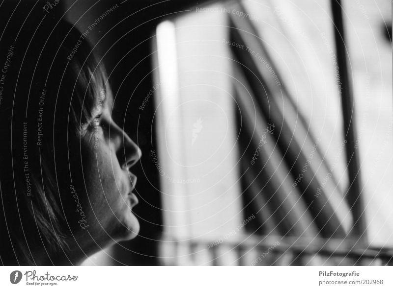 Ausblick Mensch Frau Jugendliche ruhig Gesicht Erwachsene Fenster sprechen Denken träumen natürlich authentisch Hoffnung beobachten Neugier Junge Frau