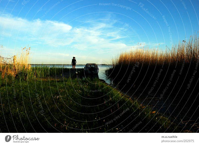 boddenblick Mensch Mann Natur blau Ferien & Urlaub & Reisen Ferne gelb Wiese Landschaft Küste Stimmung Horizont Ausflug Insel Hoffnung Idylle