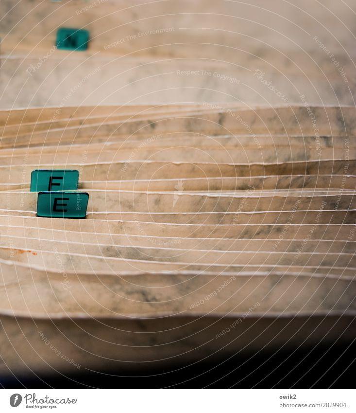 Archiv Sammlung System Karteikarten Ringbuchordner Buchstaben Aktenordner wählen einfach achtsam Verlässlichkeit gewissenhaft fleißig diszipliniert Ausdauer