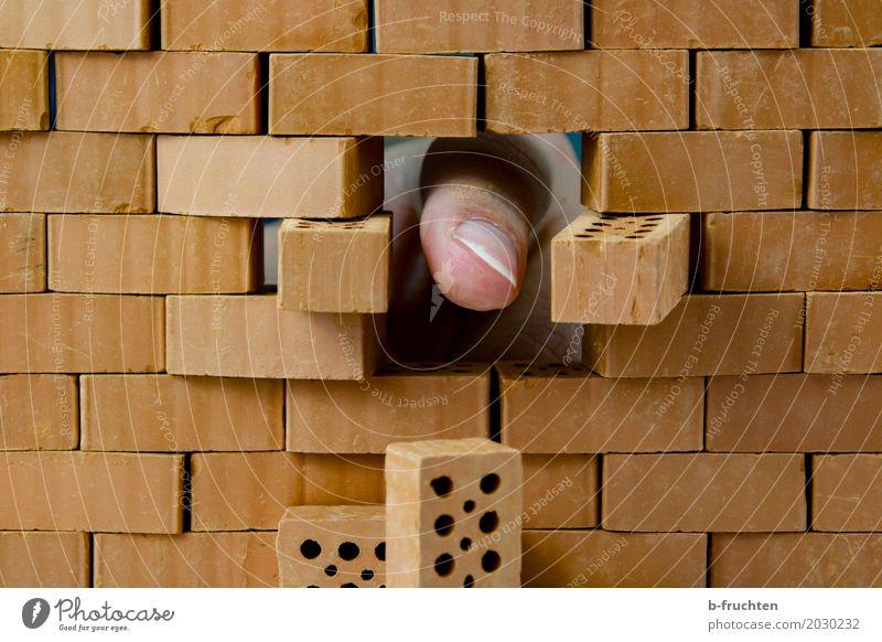 Hallo da draußen! Haus Traumhaus Hausbau Renovieren Mann Erwachsene Finger 30-45 Jahre Stein Backstein bauen entdecken Loch Zeigefinger durchschlagend