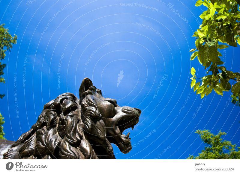 löws halbzeitansprache Wut Gefühle Macht Aggression Ärger Krise Skulptur Farbfoto Textfreiraum oben Tag Profil Statue Kopf Himmel blau Löwe schreien