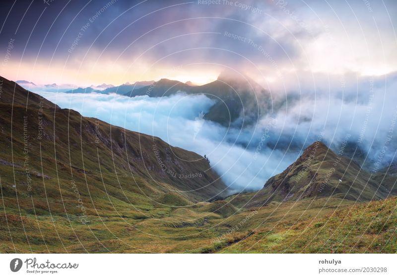 nebligen Sonnenaufgang über Berggipfeln, Alpen Berge u. Gebirge Natur Landschaft Wolken Sonnenuntergang Herbst Nebel Wiese Felsen blau Gipfel alpin