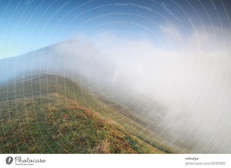 ruhiger nebeliger Morgen in den Alpen Ferien & Urlaub & Reisen Berge u. Gebirge Natur Landschaft Erde Luft Himmel Wolken Nebel Wiese Hügel wild blau