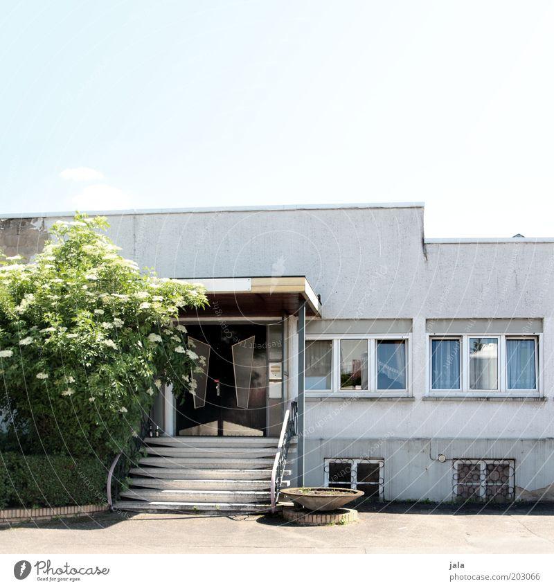 lokal Himmel Pflanze Baum Haus Gebäude Architektur Treppe Fenster Tür trist Farbfoto Außenaufnahme Menschenleer Textfreiraum oben Tag alt