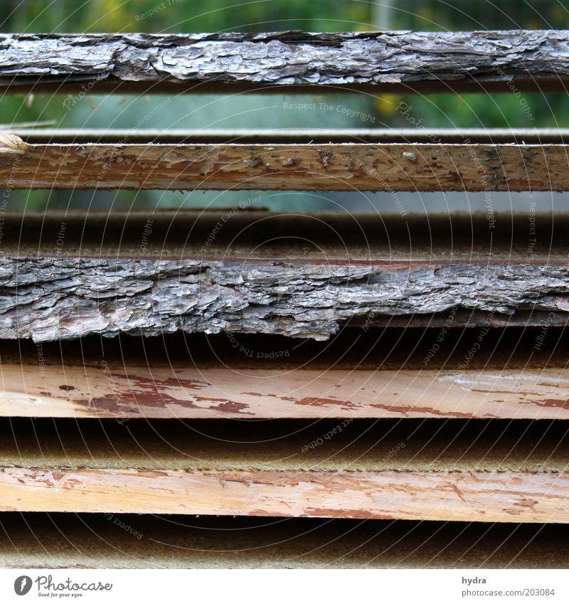 Schichtarbeit Natur ruhig Umwelt Holz grau liegen braun Arbeit & Erwerbstätigkeit Ordnung ästhetisch rein Handwerk nachhaltig Baumstamm Symmetrie Stapel