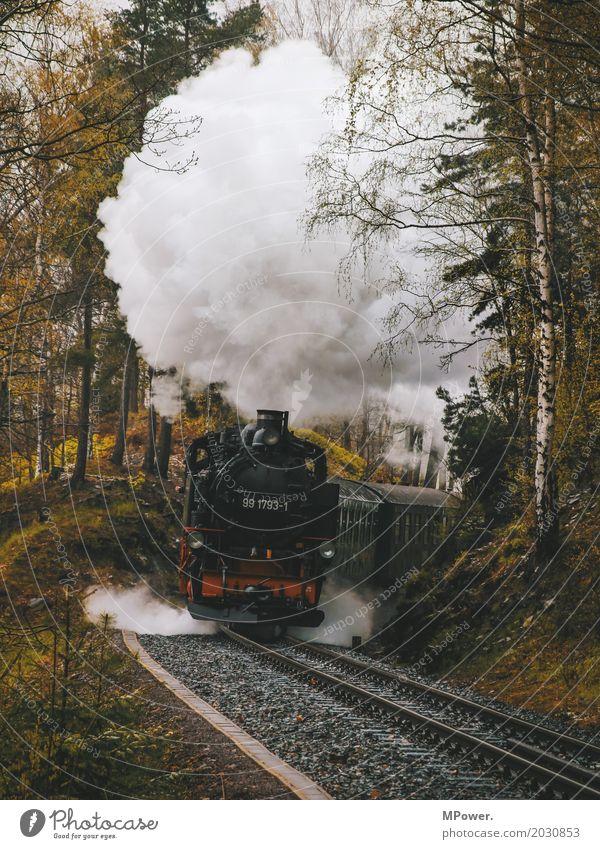 tufftuff Verkehr Verkehrswege Personenverkehr Bahnfahren alt Lokomotive Wasserdampf Gleise Eisenbahn Dampflokomotive Wald Eisenbahner Eisenbahnschwelle