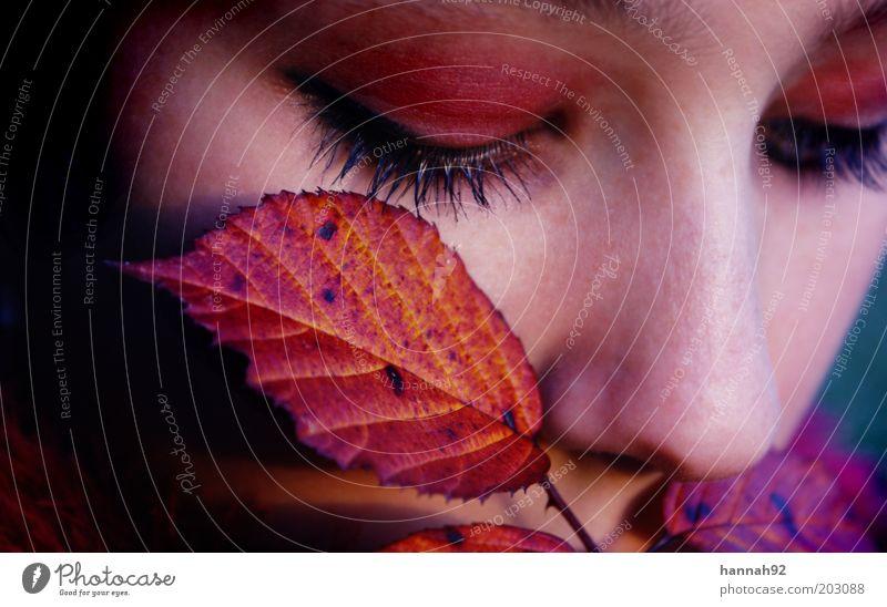 Farbklänge Junge Frau Jugendliche Gesicht Auge 1 Mensch Herbst Pflanze Blatt berühren Denken Duft träumen schön natürlich weich rot Gefühle Stimmung