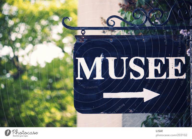 musée Ausstellung Museum Baum grün schwarz weiß Schilder & Markierungen Eingang Pfeil Wegweiser wegweisend richtungweisend Richtung Buchstaben Großbuchstabe